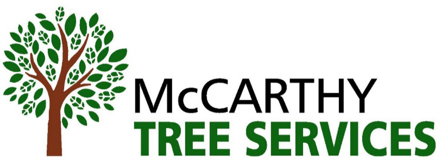 McCarthy Tree Services